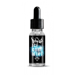 Ice Cube Mint The Bang 10ML